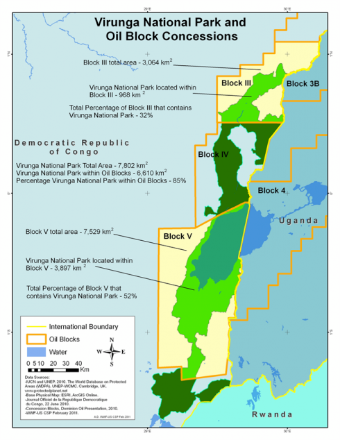 Нефтяные концессии Конго Вирунга