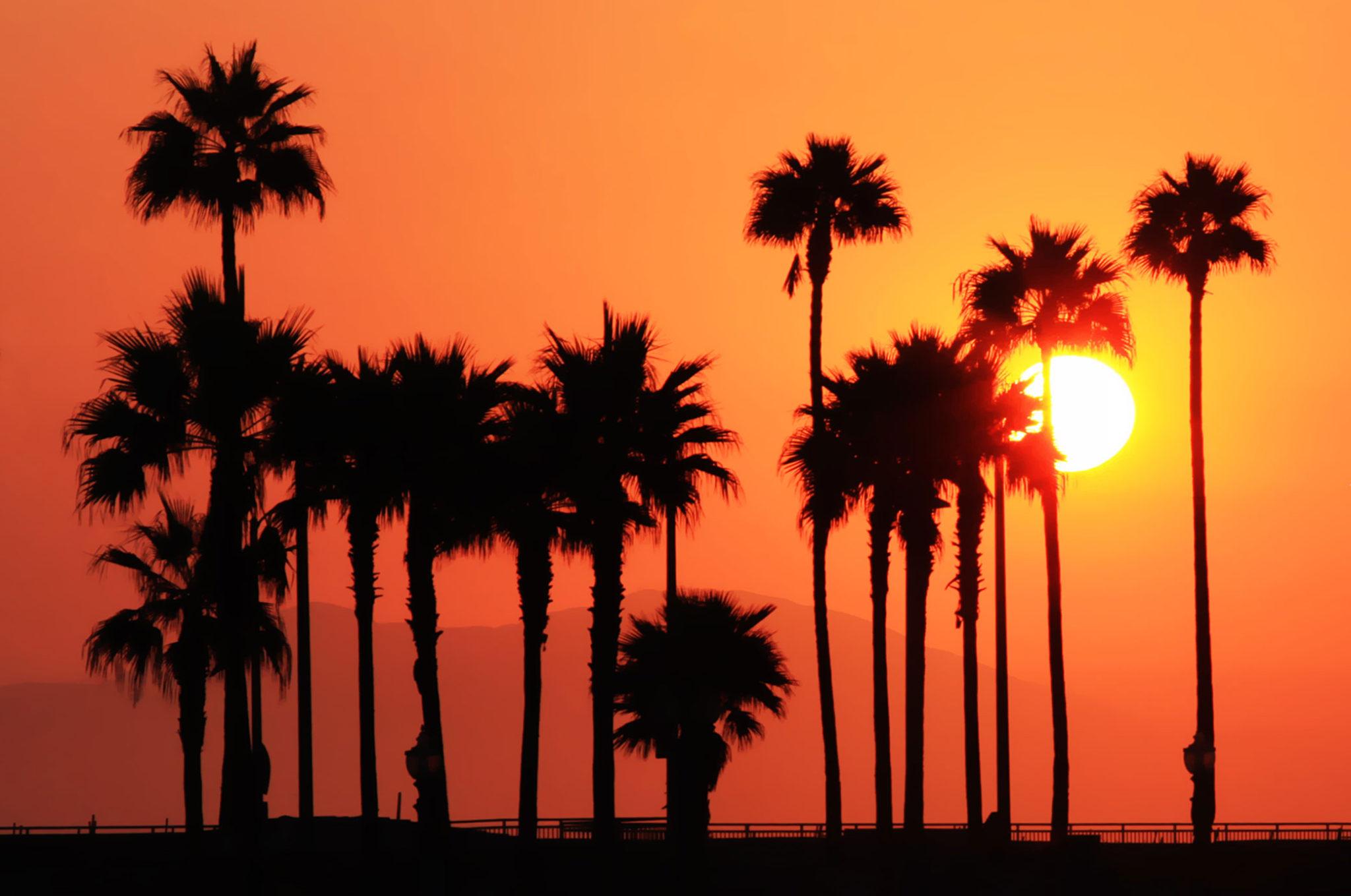 Решения, меняющие мир. Калифорния переходит на 100% ВИЭ к 2045 г.